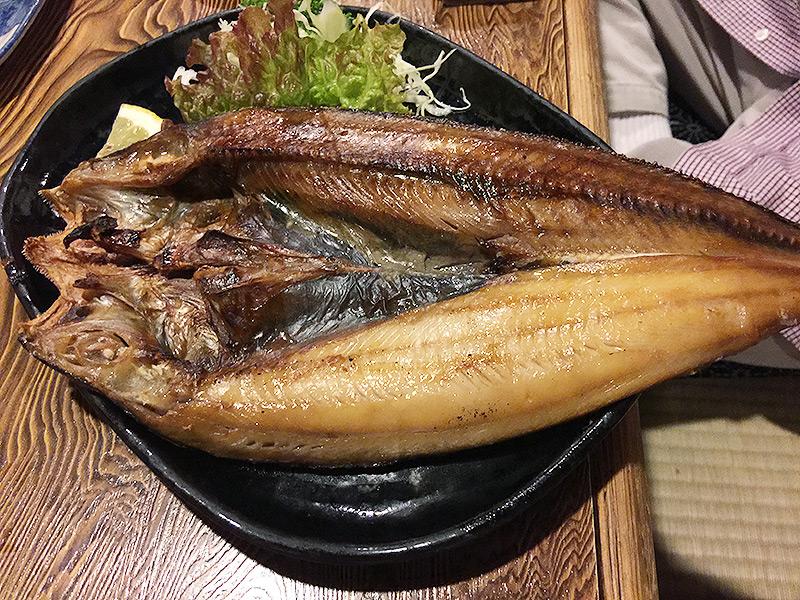 genyoshi12