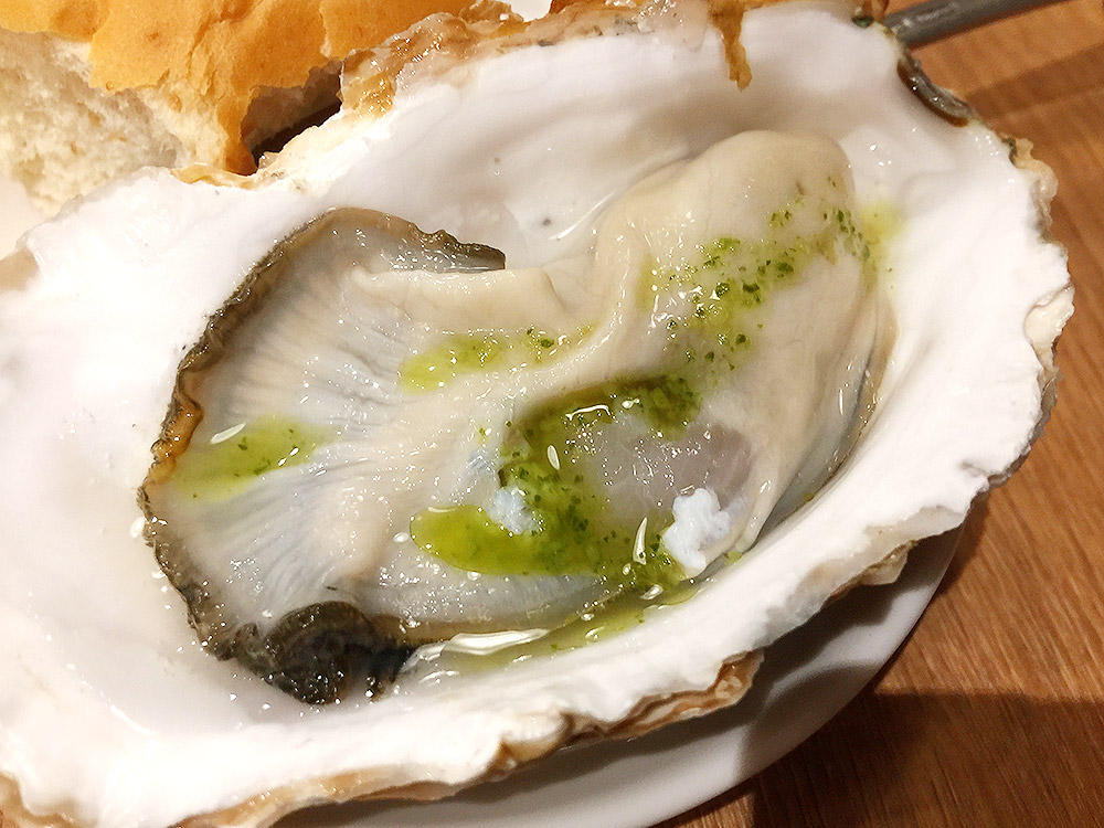 oyster13