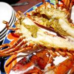 456【台場】ロブスターをたっぷり堪能できる「Red Lobster(レッドロブスター)」